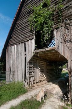 I  CAN  SEE  THIS  OLD  BARN  AS  HOUSE  WITH  OPENING  ALL  THE  WAY  THOUGH  BEING  A  BREEZEWAY  .   AND  THE  LIVING  SPACE  UPSTAIRS  .