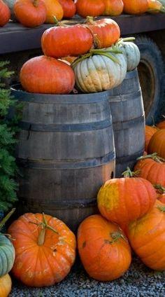 Pumpkin decorating for autumn and Halloween season