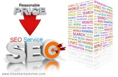 Blue Shark Solution offers exclusive SEO services at reasonable prices: http://www.bluesharksolution.com/