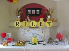 """Photo 1 of 27: Winne the Pooh / Birthday """"Riley's 100 Akre Woods"""" 