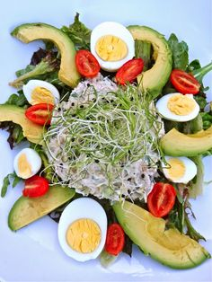 Scrumpdillyicious: Tuna Salad Plate with Avocado, Eggs & Sprouts