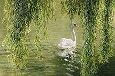 Jaargetijde: Voorjaar/Lente *Spring  ~Treurwilg *Weeping Willow met zwaan~