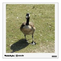 Canada Goose Wall Decal