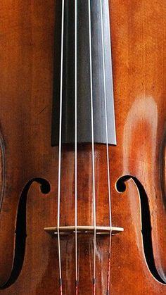 1lifeinspired:  Stradivari
