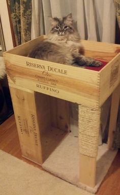 Diy Cat House Beautiful the &quotoriginal&quot Wine Crate Cat Condo with Cat Scratcher. Homemade Cat Toys, Diy Cat Toys, Cat House Diy, House For Cats, Cat Scratcher, Cat Room, Cat Condo, Pet Furniture, Furniture Outlet
