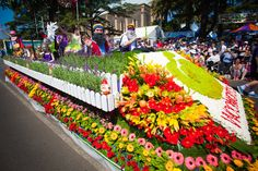 At the Grand Central Floral Parade at the Toowoomba Carnival of Flowers (2011).