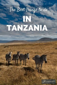 The top things to do in Tanzania - including climbing Mt. Kilimanjaro, going on a safari in the Serengeti, and scuba diving in Zanzibar. This country in East Africa has plenty of things that belong on your travel bucket list! Arusha, Tribu Masai, Valle Del Rift, Monte Kilimanjaro, Uganda, Stuff To Do, Things To Do, Snorkel, Best Scuba Diving