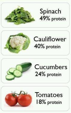 Vegetarian Proteins