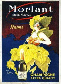 De la vigne pour habiller le Champagne, les femmes, et profiter de la douceur de vivre sur Reims #France #tourisme #reims #champagne