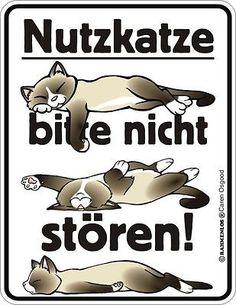 """Schild, Blechschild mit Spruch: """"Nutzkatze, bitte nicht stören!"""", neu"""
