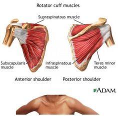 How To Stop Torn Rotator Cuff Shoulder Pain- Rotator Cuff Brace