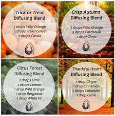 Love these diffuser blends! www.greenlivingladies.com www.mydoterra.com/303320