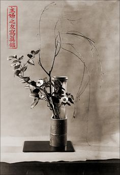 Ikebana + Black & White? ...now, THIS is cool.