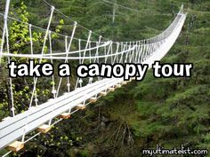 On my bucket list:  take a canopy tour