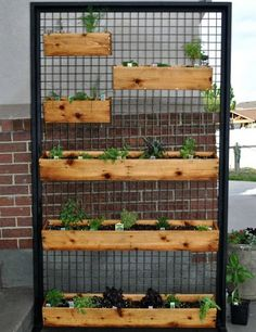 Vertical Patio Garden with herbs! This is a great idea, but to make it better, u… - Garten Dekoration Vertical Vegetable Gardens, Indoor Vegetable Gardening, Organic Gardening, Herb Gardening, Vertical Garden Design, Vertical Planter, Fence Planters, Outdoor Planters, Indoor Outdoor