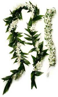 hawaiian wedding flowers Leis Orhcid Leis Tropical flower