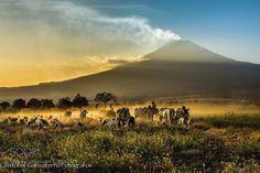 Sunset with the Popocatepetl by CristobalGarciaferroRubio. Please Like http://fb.me/go4photos and Follow @go4fotos Thank You. :-)