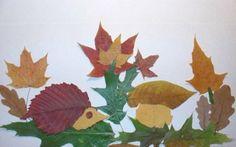 herbier et bricolage pour enfants en feuilles sèches