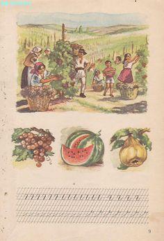 Abecedar 1959 – Un zâmbet de copil… Vintage School, Kids Education, Book Illustration, Vintage World Maps, Nostalgia, Scrapbook, Activities, Learning, Books