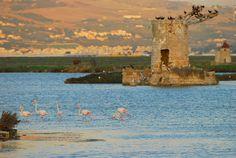 Saline di Trapani e Paceco (Sicily) by tango-, via Flickr