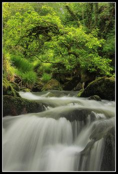 Golitha Falls, the first part of this stunning woodland walk is buggy friendly. Approx. 30 mins drive from Tredethick Farm Cottages. Toilets and ice cream van (usually!) in the car park. www.tredethick.co.uk