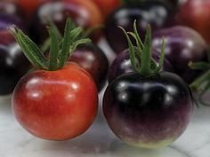 Here's a new, small cherry tomato variety from Brad Gates, Wild Boar Farms. Try the Blue Berry tomatoes!