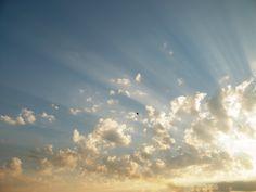 Sunrise_Bird_1