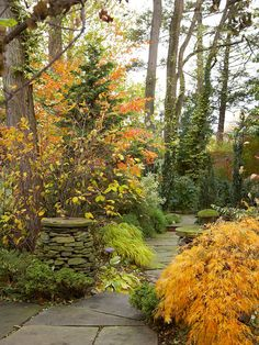 Fall Landscaping Ideas - our backyard is beginning to look a lot like this - only more REDS! Garden Paths, Garden Landscaping, Landscaping Ideas, Landscaping Software, Texas Landscaping, Garden Tips, Plant Design, Garden Design, Diy Jardin