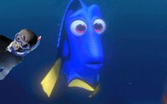 So THAT'S why dory is so forgetful!