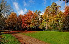 Der Sonntagsspaziergang ... um die Jägersburger Weiher war toll. Wird aber leider wohl der letzte bei so einem Herbstwetter gewesen sein. Gut, dass ich`s genutzt habe. :-)