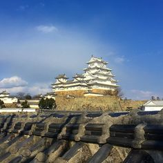 Замок белой цапли - одно из красивейших японских мест  любования цветущими вишнями! #сакура #скоро #химедзи