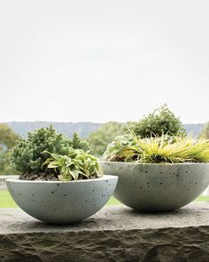 Hypertufa pots made from metal mixing bowls