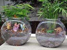 20 Easy And Pretty Diy Concepts For Terrariums 18
