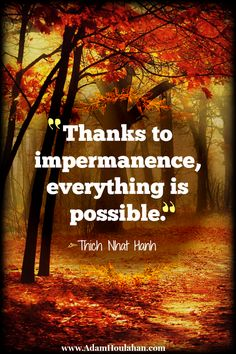 Thanks to impermanence, everything is possible #mentor2success