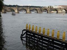 Penguins on the Vltava Prague