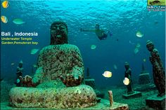 hidden underwater temple, it's away from the Lovina Beach, Bali Indonesia.Pemuteran hidden underwater temple, it's away from the Lovina Beach, Bali Indonesia. Oh The Places You'll Go, Places To Travel, Places To Visit, Lovina Bali, Best Of Bali, Bali Baby, Voyage Bali, Bali Holidays, Bali Travel