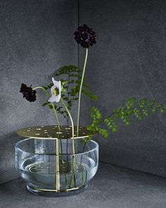 Jeu concours Fritz Hansen | MilK decoration                                                                                                                                                                                 More