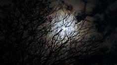 Despertar Astrológico: A força da Lua Cheia nos próximos 7 dias