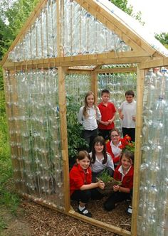 Mill Lane School's Upcycled Greenhouse
