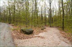 Awenda Provincial Park Ontario Canada Ontario Parks, Country Roads, Canada