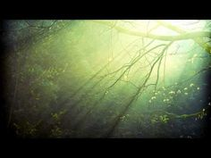 Practicing the Power of Now: Essential Teachings, Meditations, and Exercises from the Power of Now - YouTube