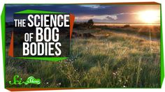SciShow Explains How Mummified Human Bodies Are Preserved In European Peat Bogs