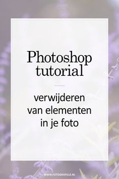 Ill-informed Best Photoshop Tutorial Effect Photoshop Tutorial, Cool Photoshop, Photoshop Actions, Lightroom, Photoshop For Photographers, Photoshop Photography, Light Photography, Food Photography, Photoshopped Animals