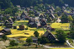 Nourland - Sitios que ver en Japón: Shirakawa-go y Gokoyama #nowyoudecide the PRICE to pay of your #trip #makeyourwish ✈ #ahoratudecides el PRECIO a pagar por tu #viaje #pidetudeseo