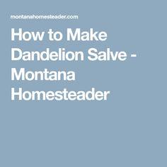 How to Make Dandelion Salve - Montana Homesteader