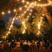 I'm totally in love with this laid back, backyard wedding. The huge old oak tree, the gorgeous flowers by Botanica Floral Designs , the outdoor lighting, the al fresco dining and the overall design f. Diy Wedding Reception, Wedding Dinner, Our Wedding, Dream Wedding, Wedding Ideas, Wedding Stuff, Wedding Backyard, Outdoor Tree Lighting, Outdoor Trees