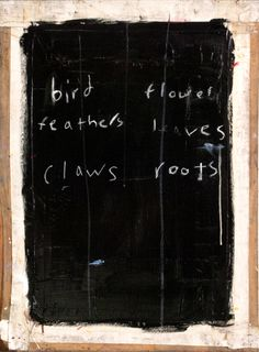 feathers/roots. joseph o'neal.
