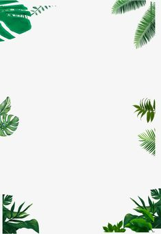 Image shared by Lucian. Find images and videos about text on We Heart It - the app to get lost in what you love. Flower Background Wallpaper, White Wallpaper, Flower Backgrounds, Nature Wallpaper, Wallpaper Quotes, Wallpaper Backgrounds, Tropical Background, Plant Background, Aesthetic Iphone Wallpaper