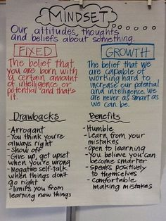 "Fixed vs. growth mindset... Teach using the book ""Miss Alaineus"" or ""the girl who never made mistakes""."
