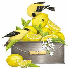 Lemon Trug